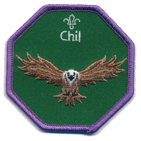 Cub Leader Fun Badge