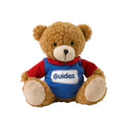 Guides Teddy Wearing Polo
