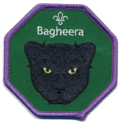 Cub Leader Fun Badge Bagheera