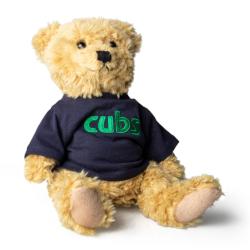 Cub Scouts Teddy Bear