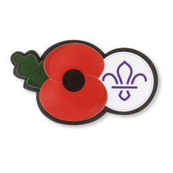 Poppy & Scouting Fleur de Lis Window Sticker 2019