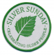 Silver Sunday Scouts Fun Badge