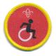 Cub Activity Disability Awareness