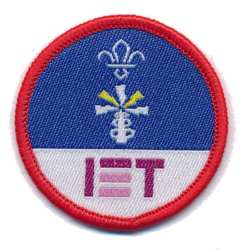 Scout Activity Electronics