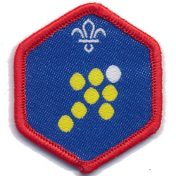 Scout Team Leader Challenge Award
