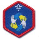 Scout Teamwork Challenge Award