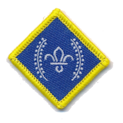 Chief Scout's Platinum Award