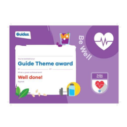 Theme Award – Guides Be Well certificate