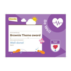 Theme Award – Brownies Be Well certificate