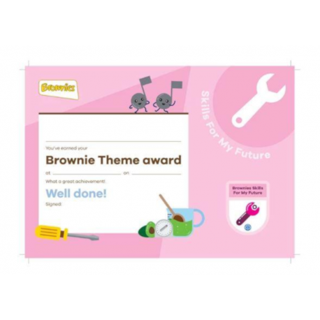 Theme Award - Brownies Skills For My Future certificate