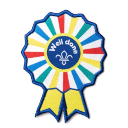 'Well Done' Scouting Fun Badge