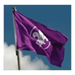 World Scout Flag - 'D' Ringed
