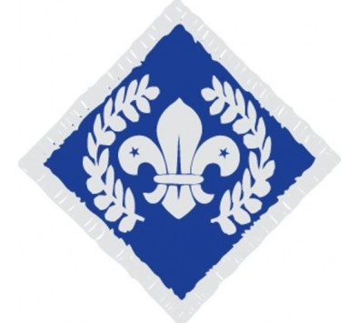 Explorer CSA Badges