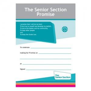 Senior Section Leaders Books & Certificates