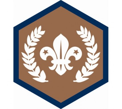 Beaver Challenge And CSA Badges