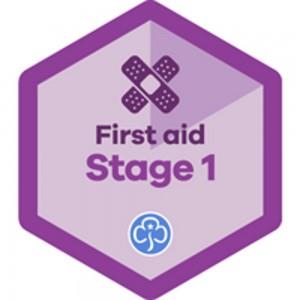 Skills Builder Badges