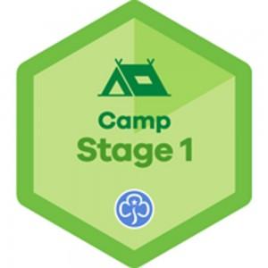 New Skills Builder Badges